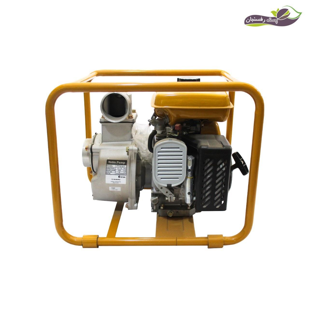 تصویر موتور پمپ آب روبین مدل PTG 307