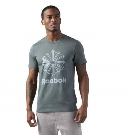 تیشرت مردانه ریباک مدل Reebok Classics Big Logo Tee