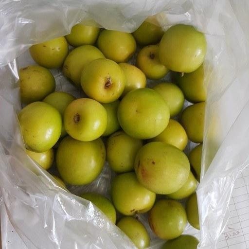 میوه کُنار محلی (کنار سیبی)