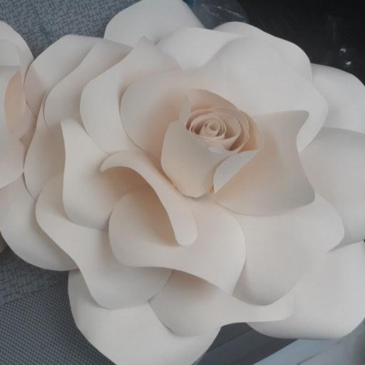 گل دکوراتیو مناسب برای تزیین دیوار |
